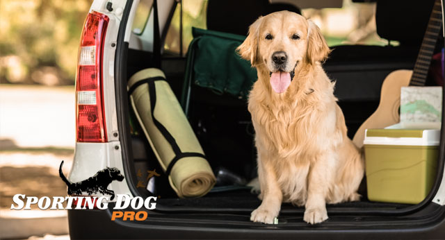 Four Travel Tips that Will Keep Your Dog Happy
