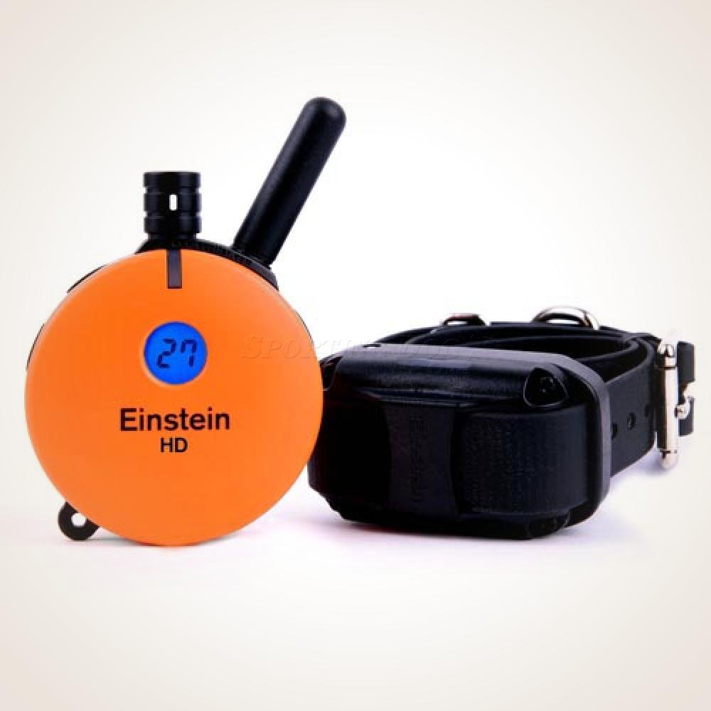 Einstein Upland HD Remote E-Collar
