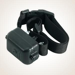 DT Systems Mini No Bark Training Collar 1125 DT