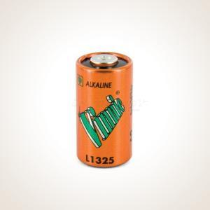 PetSafe 6V Alkaline Battery